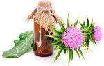 Использование расторопши для лечения панкреатита поджелудочной железы