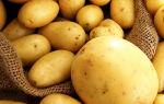 Можно ли есть картофель при сахарном диабете 2 типа