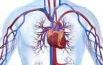 Какие признаки диабета у женщин и мужчин? последствия эндокринного заболевания